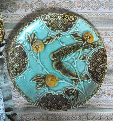 Barbotine plate salins parrot